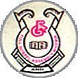 fulga_logo